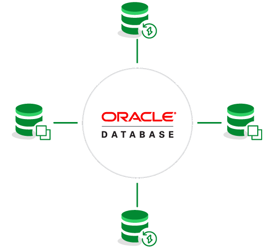 Instant Recovery and Clones for Oracle